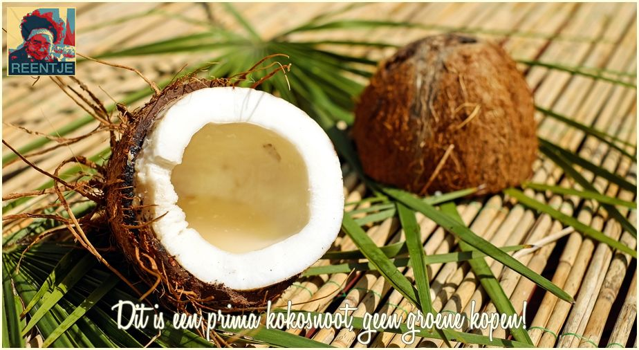 coconut-1501334-cr-logo