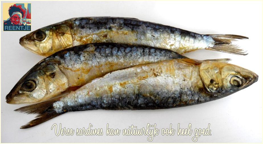 sardines-2240180-cr-logo