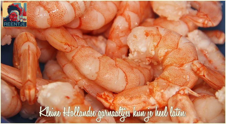 shrimp-3560003_1920-cr-logo