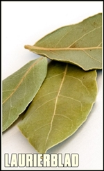 Dry bay leaves on white