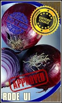 onion-3385081_1920-tumb-ec-200