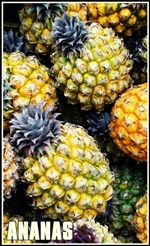 pineapple-1567422-tumb-re